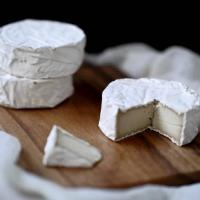 New Roots Soft Camembert Vegan Cheese